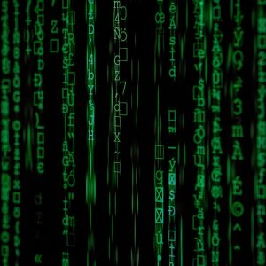 Amazon FBA Launch durch den Ranking Algorithmus.