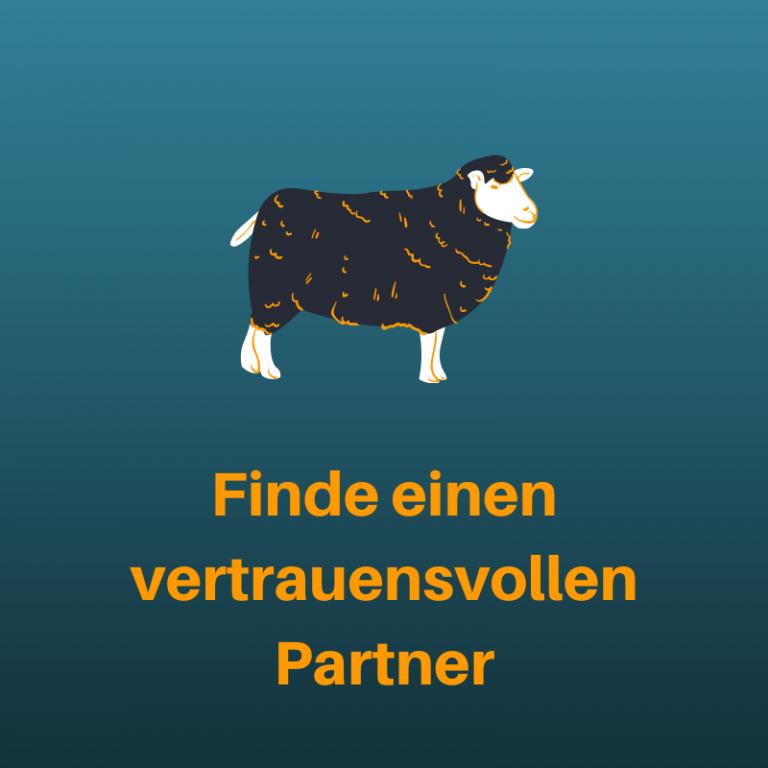 fba-kurs-vertrauensvoller-partner-suchen